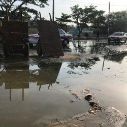 Denuncian locatarios de Malibrán fuga de aguas negras