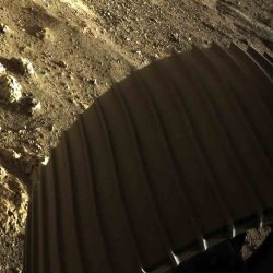 """NASA publica espectaculares fotos del """"Perseverance"""" en Marte"""