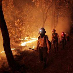 Extienden alerta atmosférica por incendio en el Bosque de la Primavera, Jalisco