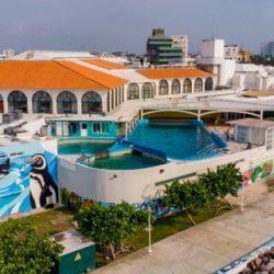Incumple Acuario de Veracruz con convenio de grabación de producción de Disney Plus